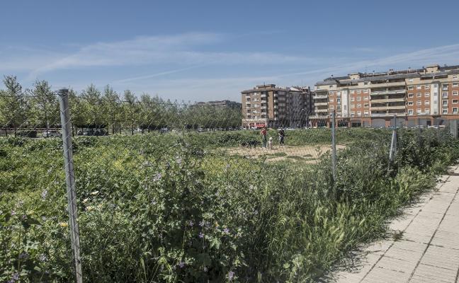 El Ayuntamiento de Badajoz revisará 800 solares para evitar incendios de pastos