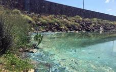 Hornachos recupera el agua corriente pero sigue sin poder beberse por las algas del pantano