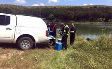 La Confederación no retirará las algas de Los Molinos y dice que mejora la calidad del agua