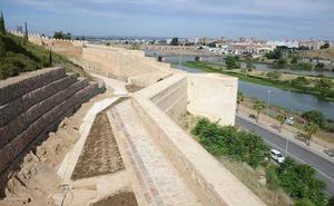 El PSOE pide que salga a licitación cuanto antes la limpieza de las laderas de la Alcazaba