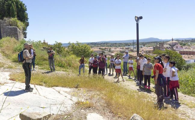 El V Festival del Cernícalo Primilla de Trujillo tendrá lugar del 25 al 27 de mayo