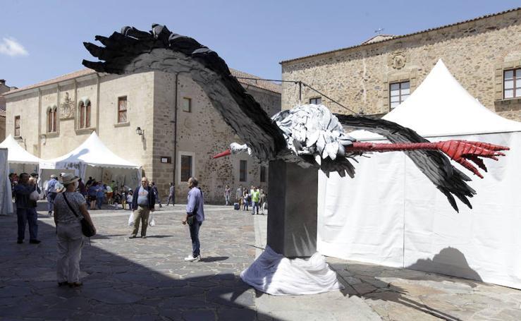 Festival de las Aves de Cáceres