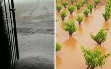 Fuertes granizadas causan daños en cultivos de Santa Amalia y Arroyo de San Serván