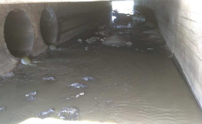 Denuncian que una aceitunera ha vertido en el arroyo Las Picadas de Almendralejo