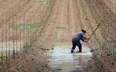 CC OO cifra en unos 250.000 los jornales de trabajo directo perdidos por las tormentas