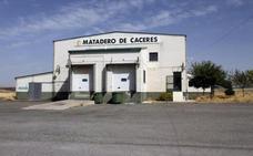 Cáceres recibirá 16.000 euros anuales por explotación del matadero