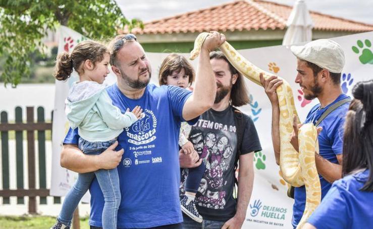 Badajoz celebra el Día de la Mascota