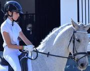«Los caballos me transmiten equilibrio emocional»