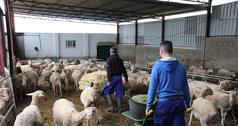 La IV edición de la Escuela de pastores abre su plazo de inscripción