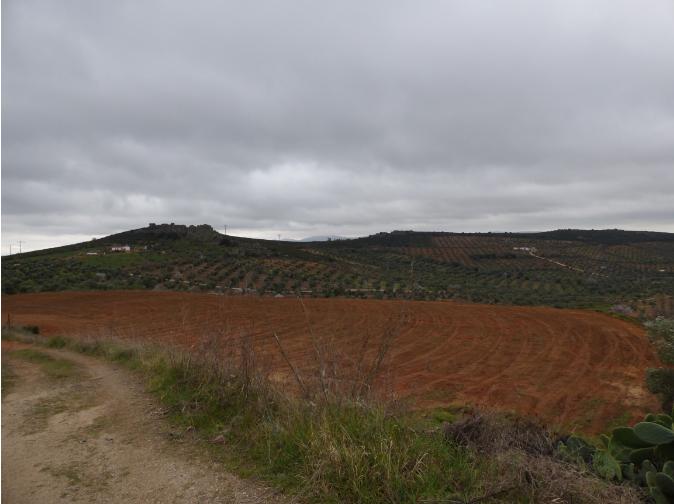 Castuera contará con un circuito de motos enduro de dos hectáreas y media