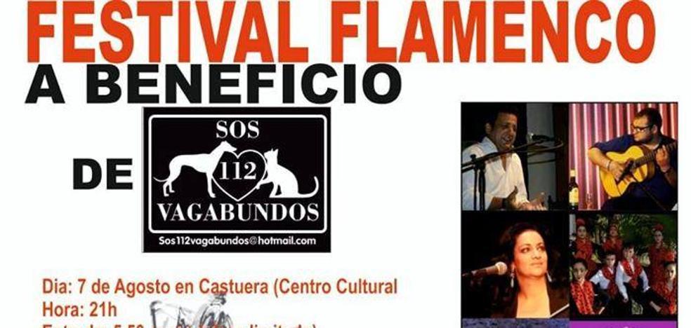 El Festival Flamenco Benéfico 'SOS 112 Vagabundos' se celebrará el próximo miércoles 7 de agosto