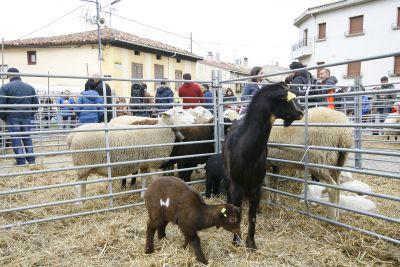 Ferias Agrícolas y ganaderas