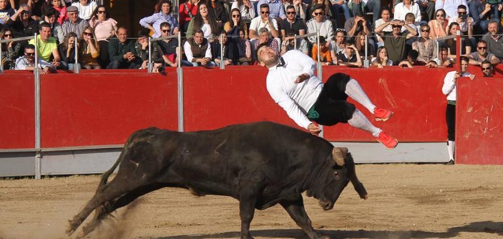 Clausura la Feria Internacional de Toro con éxito de participación en todos los festejos