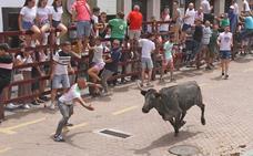 Una gran vaca de Victorino Martín abrió los encierros de las fiestas de San Juan