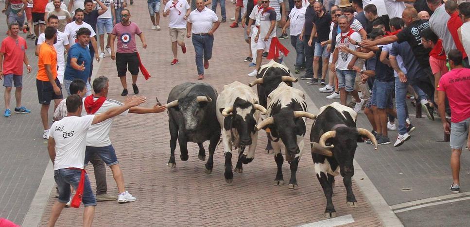Un toro de ensueño en la tarde de San Juan