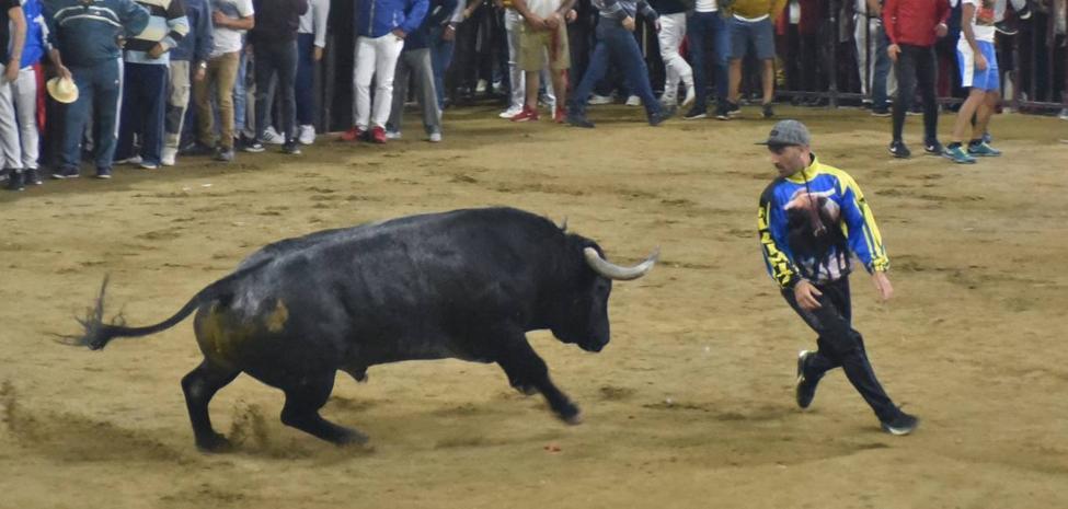 El toro Malagueño de Adolfo Martín también estuvo en buena línea