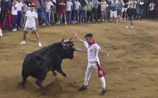 El toro de los recortes