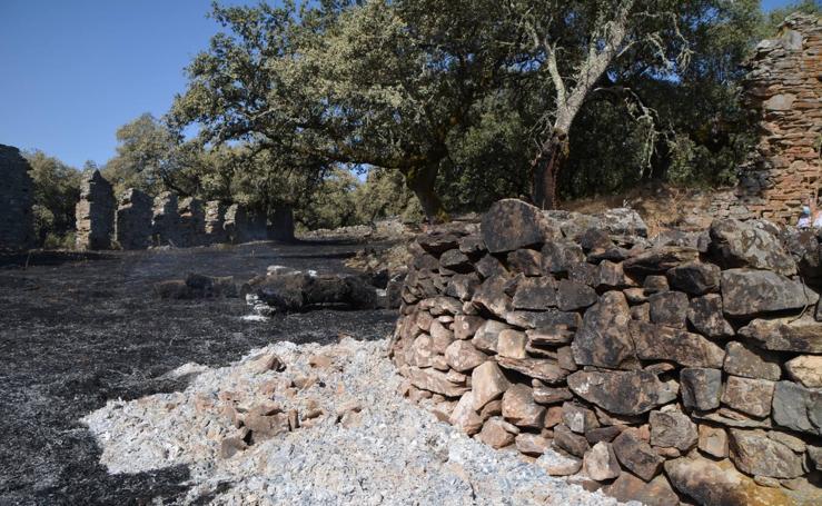 El fuego marca su huella en Nertóbriga