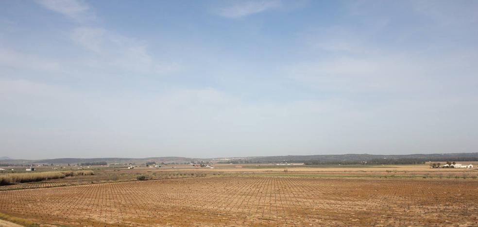 El DOE publica las bases provisionales de la concentración parcelaria Dehesa de Guareña