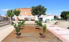 El Ayuntamiento coloca árboles en el nuevo parque de la Avenida de la Constitución