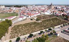 El Ayuntamiento de Guareña adquiere una parcela para promoción de VPO y usos dotacionales
