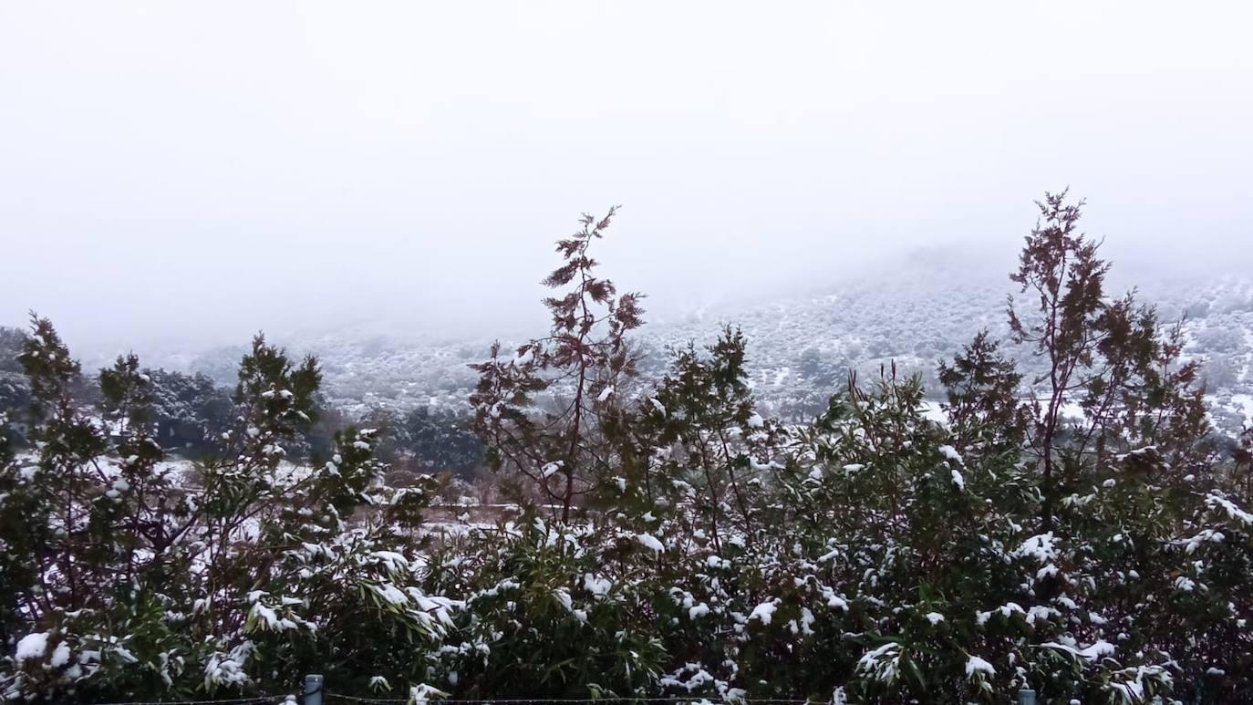 Herrera del Duque nevada 09-01-21
