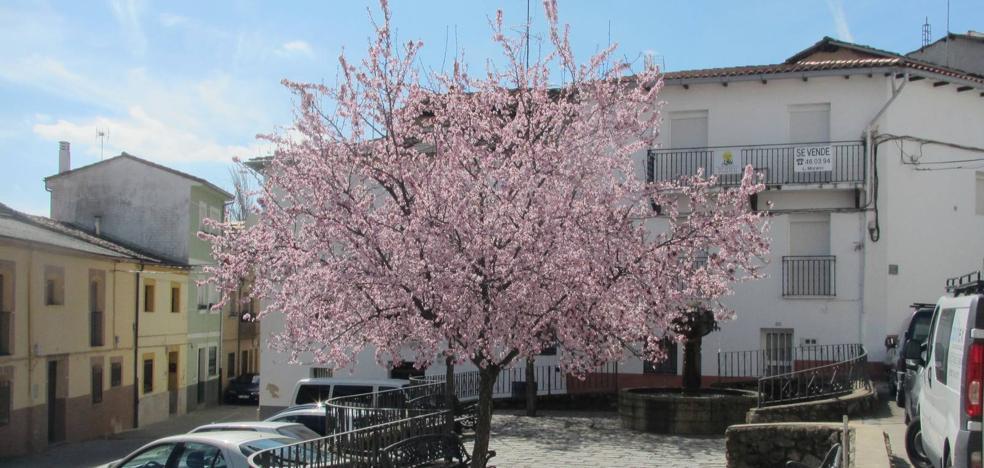 La floración de los árboles y frutales colorea Jaraíz