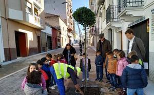 Hoy se enciende el alumbrado de la avenida de Yuste y calle Soledad