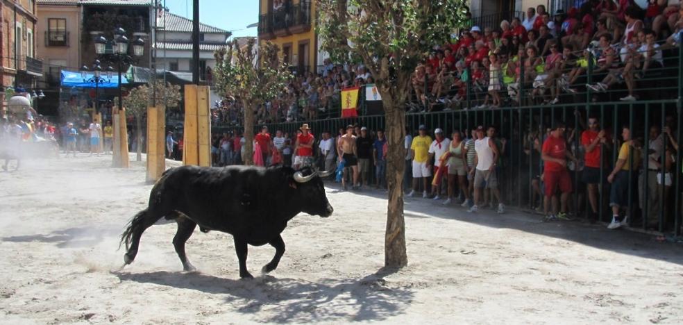 Jaraíz vive intensamente las ferias y fiestas del Tabaco y Pimiento