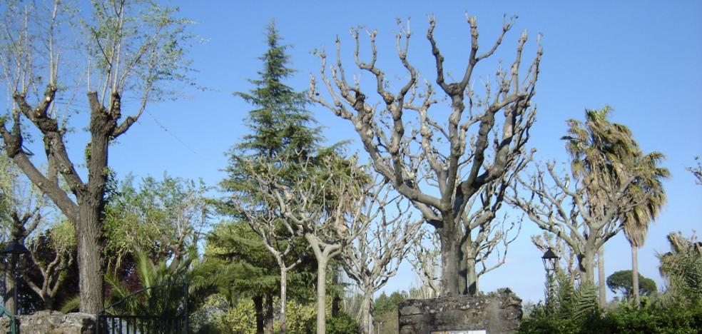 El Ayuntamiento cierra el parque Los Bolos por el riesgo de caída de árboles por viento
