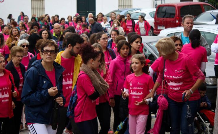 El rosa llena de solidaridad Jerez para avanzar en la lucha contra el cáncer