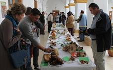 La Asociación cultural Micológica celebra sus XV Jornadas del 9 al 11 de noviembre