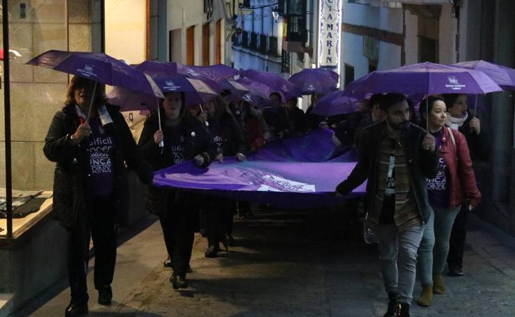 La 'Marcha morada' recorre Jerez contra la violencia de género