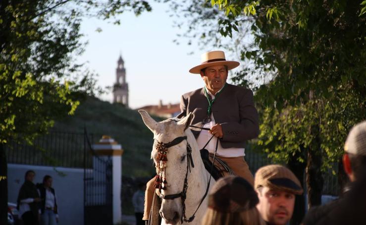 Devoción y júbilo en la Romería en honor de Nuestra Señora de Aguasantas, patrona de Jerez