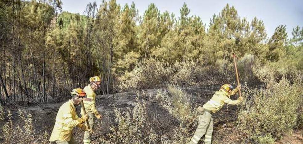 El Infoex dispondrá de más de mil bomberos en la campaña de peligro alto de incendios