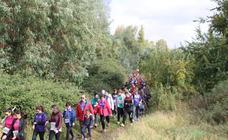 AFAD Jerez Sierra Suroeste organiza, el 14 de noviembre, la marcha senderista solidaria 'Entorno Natural de La Bazana'