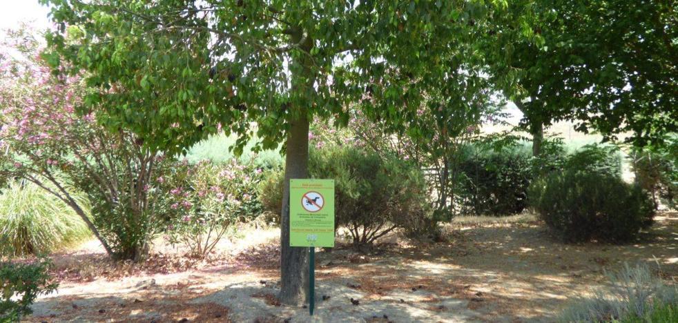 El ayuntamiento conciencia de la limpieza de parques y jardines