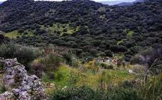 Ruta por la Sierra de San Cristóbal de Almoharín