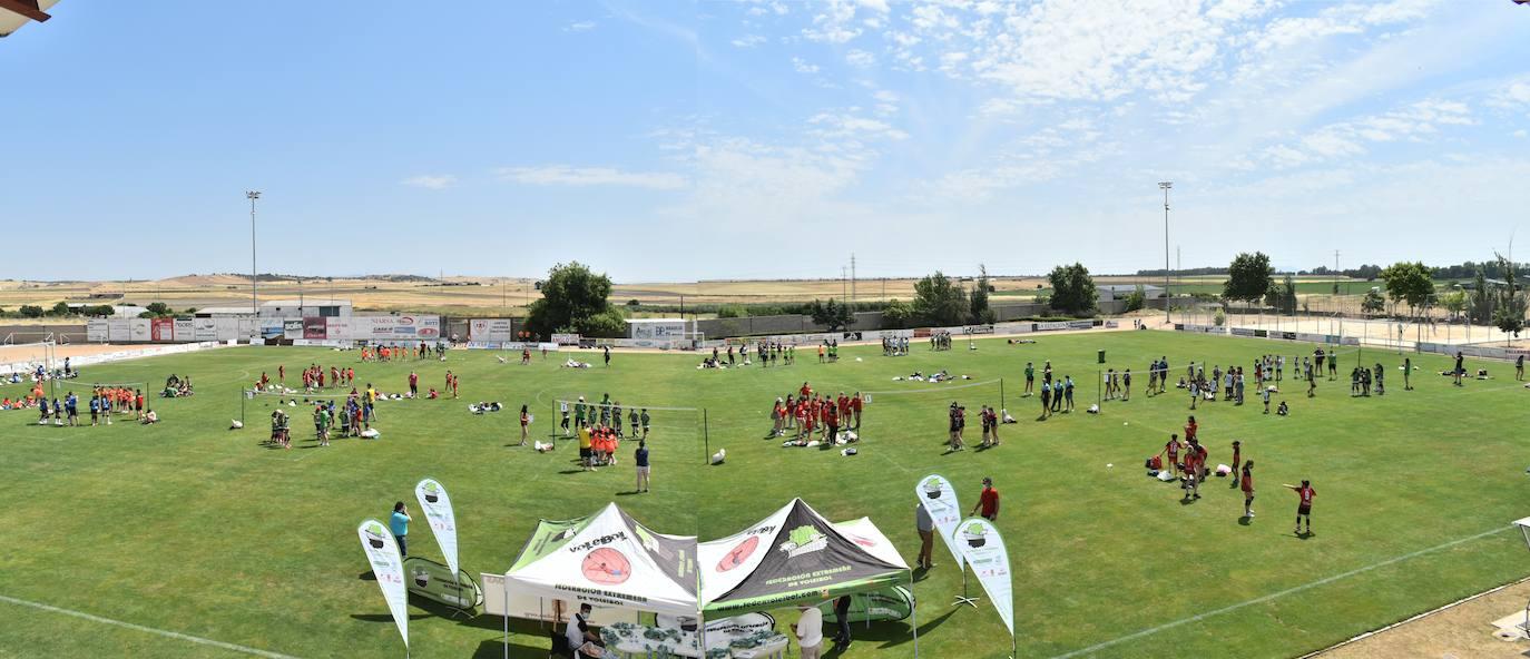 Pequeños jugadores de toda Extremadura disfrutaron del 'X Día del Minivoley'