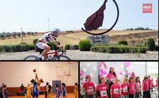 La primera gala del deporte será un escaparate de la variada oferta local