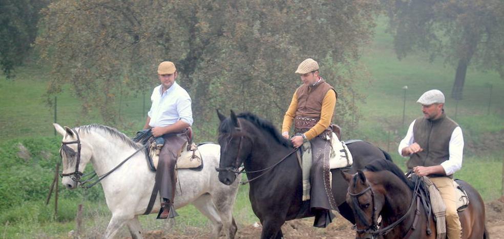 La Peña Ecuestre 'El Estribo' celebra el XIX Día del Caballo de Monesterio el próximo 6 de abril