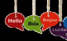 El Consorcio de Información al Consumidor centra este mes su actividad en cursos de idiomas en el extranjero