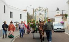 La Hermandad de San Isidro insiste en la importancia de cumplir las normas durante el camino hacia la pradera