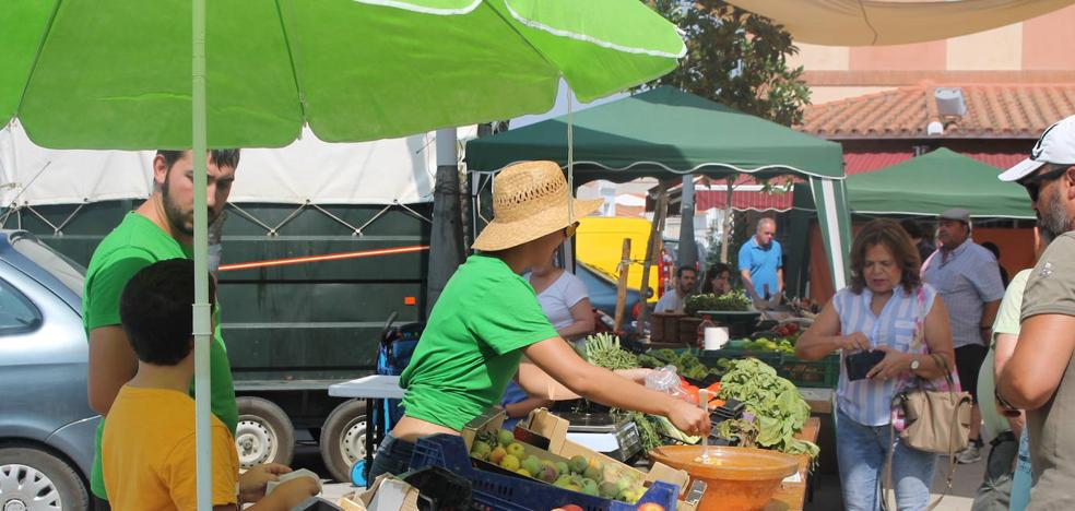 Los productos de la huerta se dan cita este sábado en la VII Feria Comarcal del Huerto de Tentudía