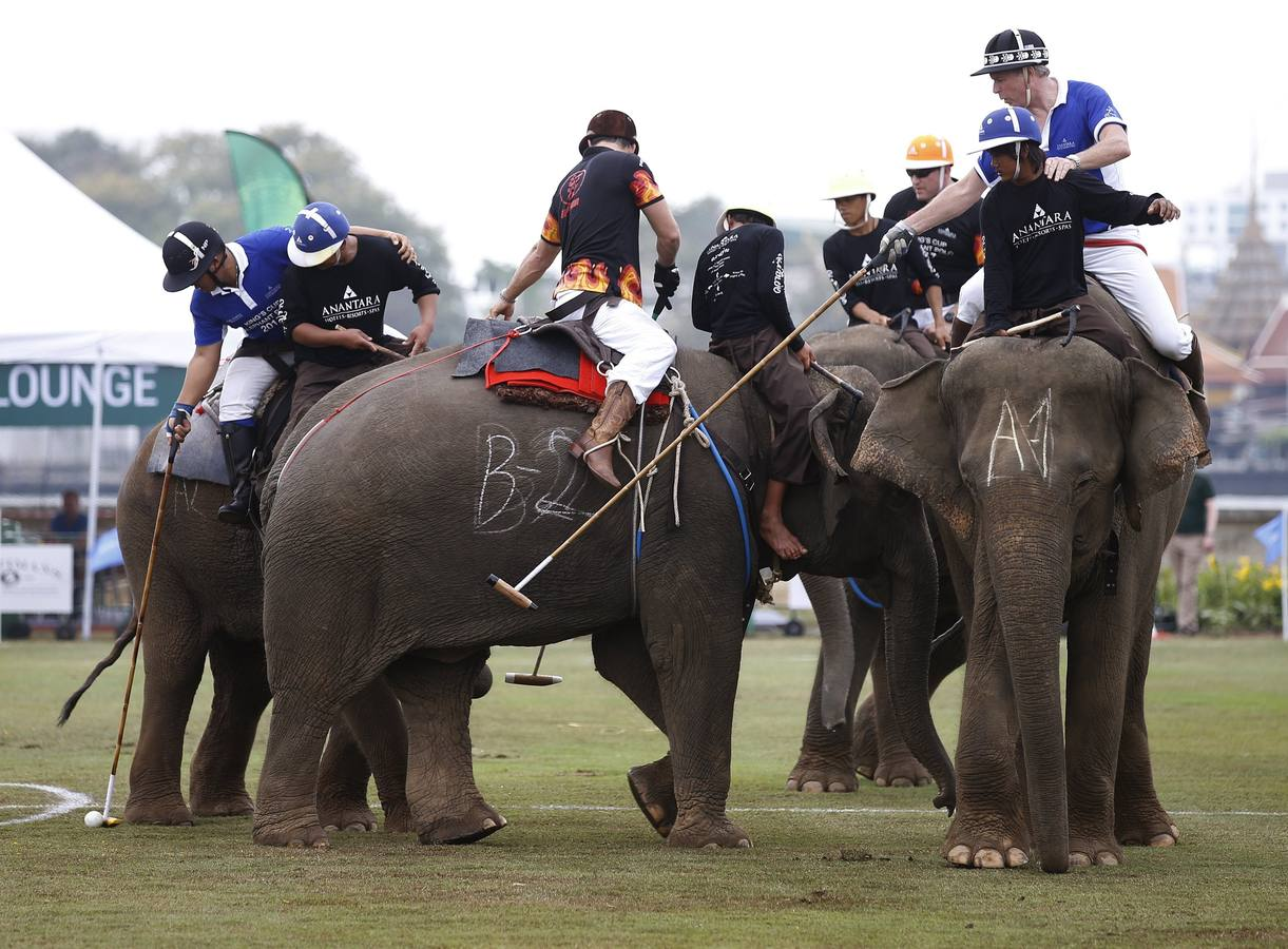 King's Cup Elephant Polo 2017