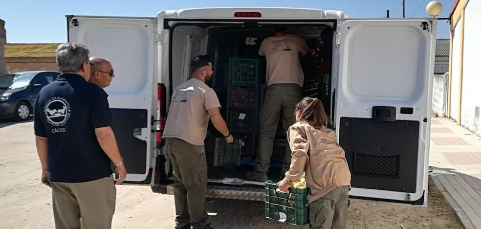 La escuela 'Sabores frutales' entrega 30.000 kilos de productos agrarios al Banco de Alimentos
