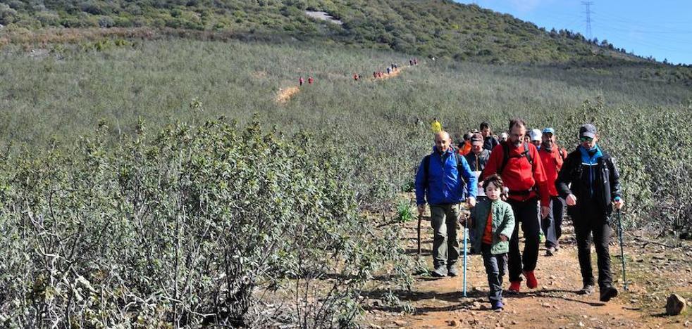 Medio centenar de actividades para promocionar Monfragüe
