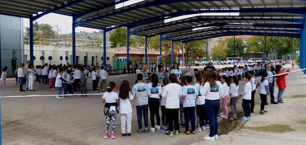 Una sola empresa opta a cerrar la pista del colegio Campo Arañuelo