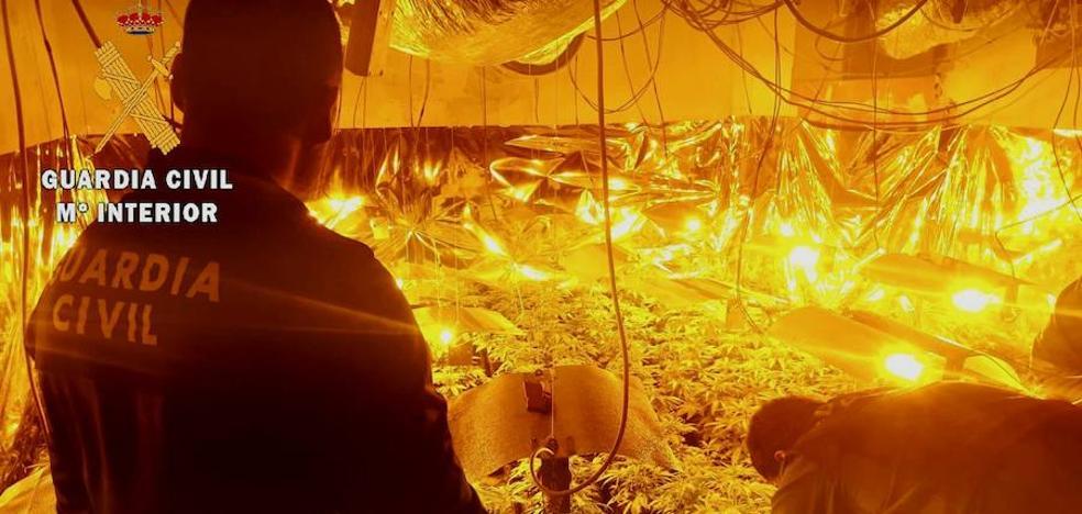 La Guardia Civil detiene a un vecino que cultivaba marihuana en el interior de su vivienda
