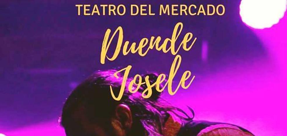 Concierto de Duende Josele en el teatro a beneficio de Aratea